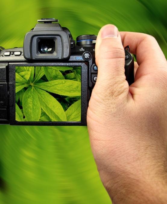 Taller de fotografía básica (I)