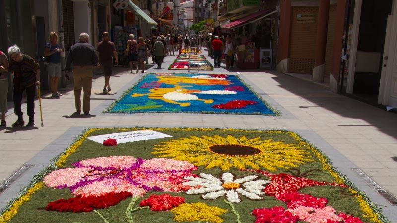 Resultado de imagen de Corpus Christi - Alfombras florales la garriga Cursos fotografía Barcelona