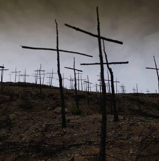 Salida fotográfica al bosque de las cruces quemadas de Ódena