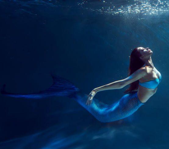 Salida fotográfica Sirenas en Cala Montjoi el 25 de julio